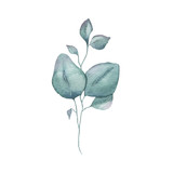 Akwarela tropikalnej zieleni kwiatowy liść roślina las zioło wiosna - 278602460