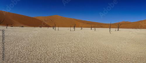 Landschaft in Namibia Afrika Canvas Print