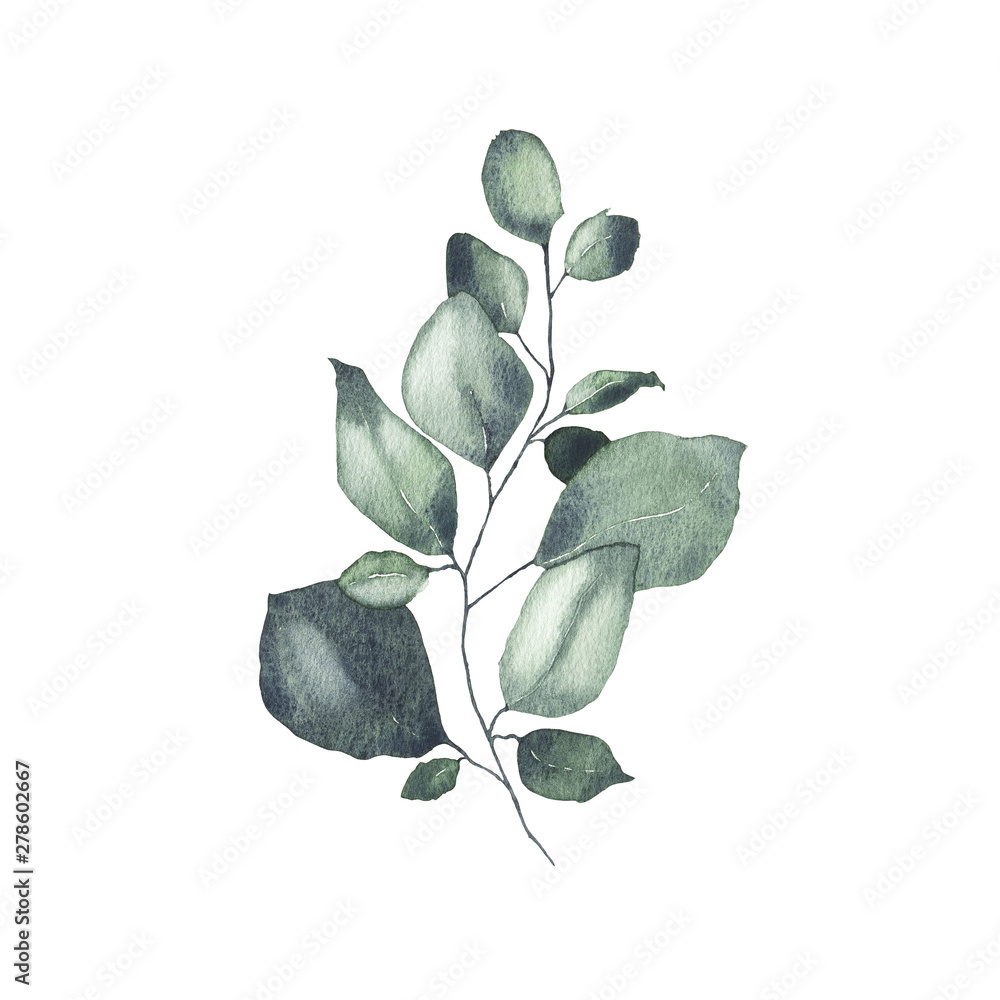 Fototapety, obrazy: Watercolor tropical greenery floral leaf plant forest herb spring