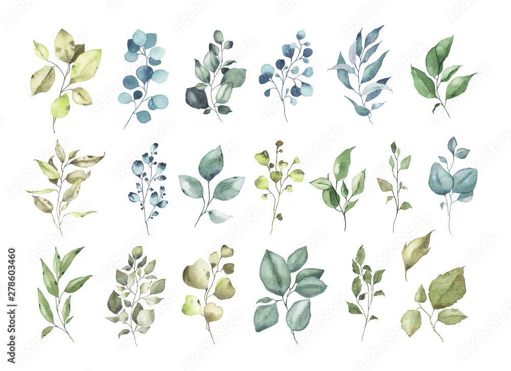 Fototapety, obrazy: Collection of watercolor tropical greenery floral leaf plant forest herbs