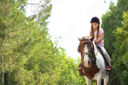 Fototapeta Cute little girl riding pony in green park obraz