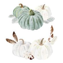 Handpainted Watercolor Pumpkins