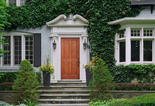 Wooden Front Door Of House Covered By Ivy