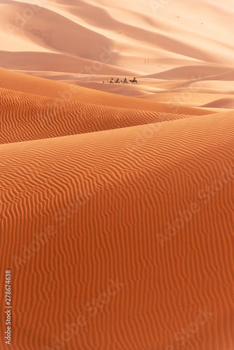 Foto auf Leinwand Rot kubanischen Beautiful sand dunes in the Sahara desert.
