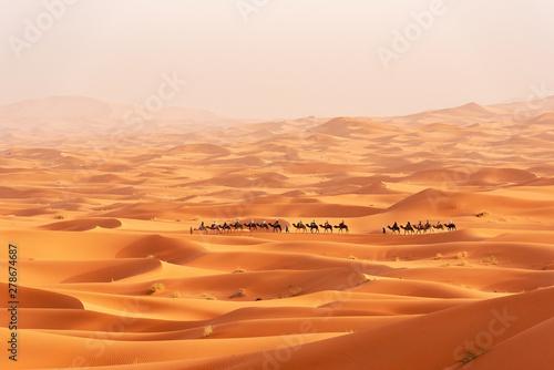 Foto auf Gartenposter Rotglühen Beautiful sand dunes in the Sahara desert.