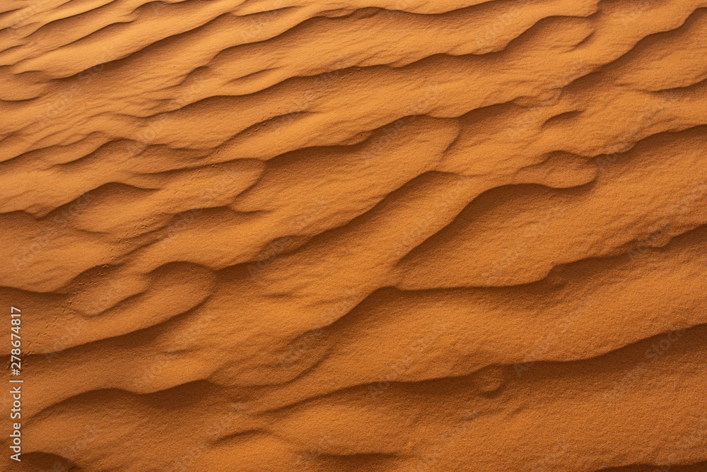 Fototapety, obrazy: Beautiful sand dunes in the Sahara desert.