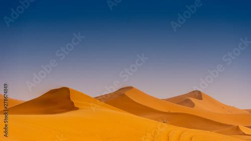Poster de jardin Bleu nuit Beautiful sand dunes in the Sahara desert.