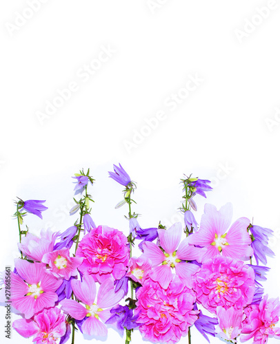 Fototapety, obrazy: Summer flower arrangement of pink roses and lilac bells on a white background. Bright gentle tones. The view from the top. Background for greetings, invitations, cards.