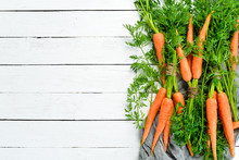 Fresh Carrots On A White Woode...