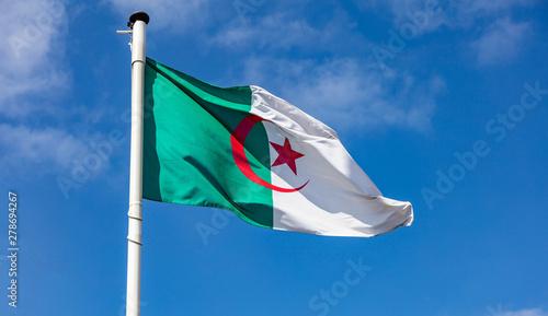 Algerian flag waving against clear blue sky Wallpaper Mural