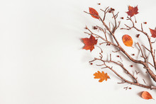Autumn Composition. Maple Leaves, Branch On Gray Background. Autumn, Fall, Thanksgiving Day Concept. Flat Lay, Top View, Copy Space
