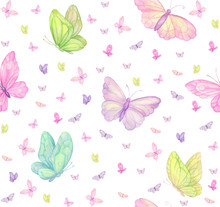 Butterflies On White Backgroun...
