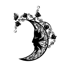 Sleeping Crescent Moon Among R...