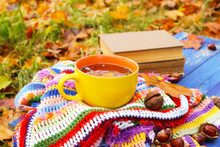 Composition With Yellow Cup Of Herbal Tea And Fall Leaves On Checkered Bright Warm Striped Plaid In Autumn Garden. Old Books And Horse Chestnuts On Blue Wooden Boards.
