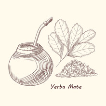 Yerba Mate Drink. Traditional ...