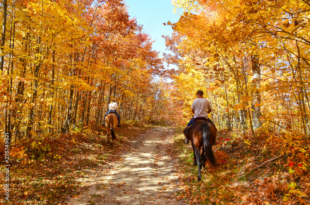 Fototapety, obrazy: horseback riding on a fall country path