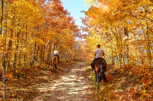Fototapeta horseback riding on a fall country path  obraz