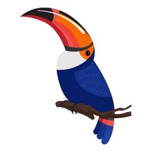 Toucan Bird Icon. Cartoon Of Toucan Bird Vector Icon For Web Design Isolated On White Background