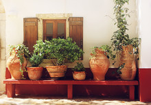 Plants In Pots On A Bench Near A Textured Wall With A Window, Greece, Crete