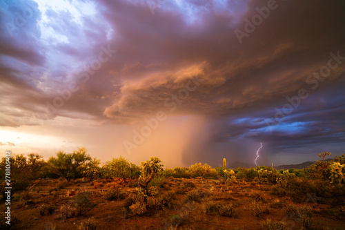 Poster Marron chocolat Monsoon thunderstorm in the Arizona desert