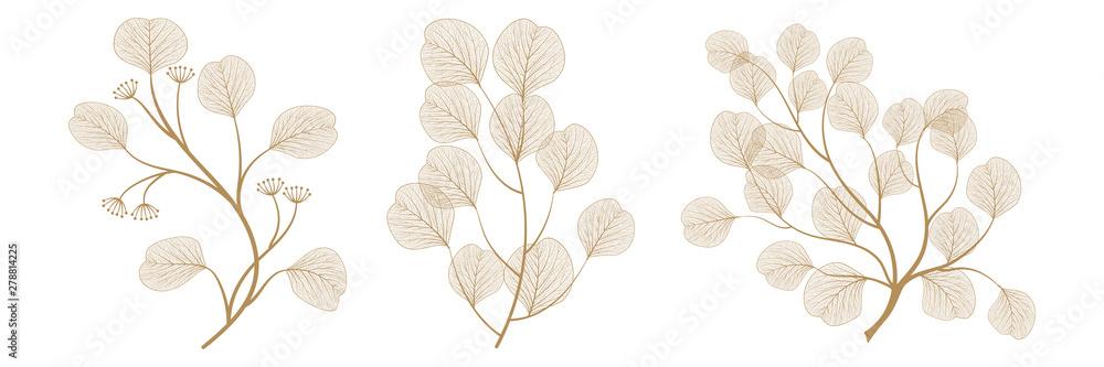 Fototapeta Set branches with leaves eucalyptus. Vector illustration. EPS 10.