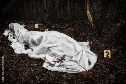 Victim of a violent crime under a sheet in a rural yard Canvas Print