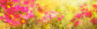 Leinwandbild Motiv Abstract flower background