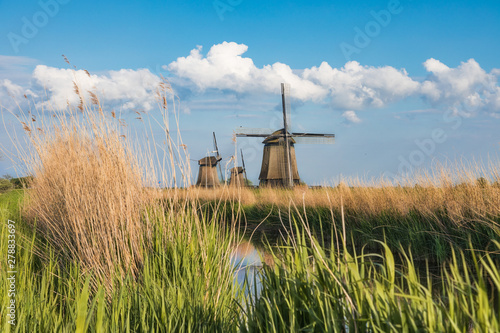 Fotografía  Dutch landscape with three windmills in the background..