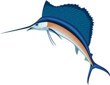 Vector Swordfish Atlantic Sailfish