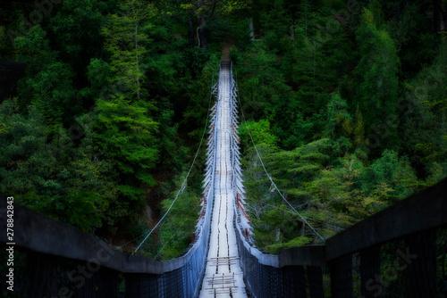 Photo old pedestrian suspension bridge located in rural area