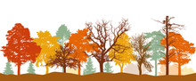 Silhouette Of Forest In Autumn. Bare Trees, Trees In Orange, Yellow, Red Colors. Vector Illustration.