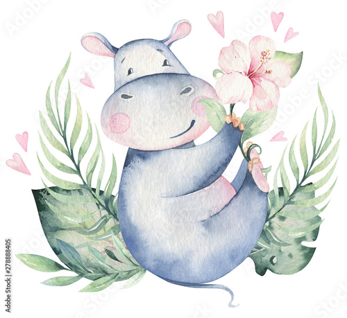 Fotomural Hand drawn cute isolated tropical summer watercolor hippo animals
