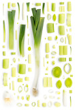 Leek Collection Abstract