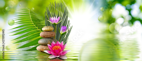 Poster de jardin Nénuphars lotus flower and stones on water