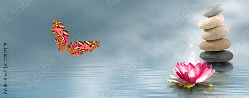Poster de jardin Nénuphars lotus, stones, butterfly on water background