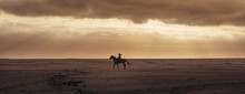 Silhouette Of A Woman Riding H...