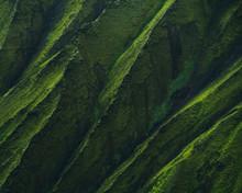Green Shapes.