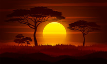 Sunset In Africa. Savanna Land...