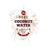 Cococnut water label over hand drawn coconut bunch - 278963816
