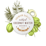 Cococnut water label over hand drawn green coconuts with leaves. - 278963867