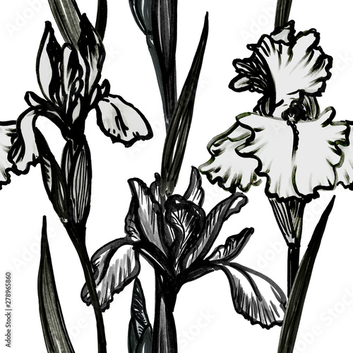 Obraz na plátně  Seamless bold  drawing black and white pattern - iris plant with flower, sthem, leaf and bud on white background