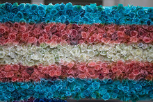 Transgender Flag Made From Painted Rose Flowers