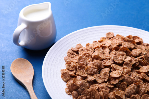 dry cereal flakes Canvas Print