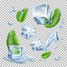 Vector Realistic Ice Cubes Mint Green Leaves Set