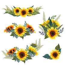 Beautiful Floral Collection With Sunflowers Bouquet, Leaves, Branches, Fern Leaves. Bright Watercolor Sunflowers Composition Set.