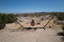 A Woman Sits In A Hammock In The Middle Of Nowhere Desert Joshua Tree, CA