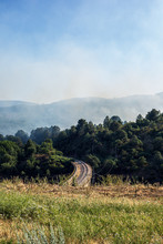 Forest Fire Smoke In The Mountain