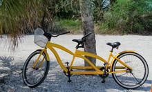 Yellow Bicycle Built For Two.