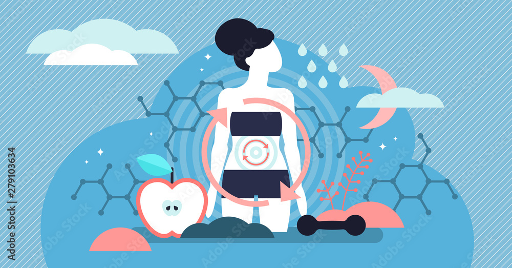 Fototapeta Metabolism vector illustration. Flat tiny food to energy persons concept.