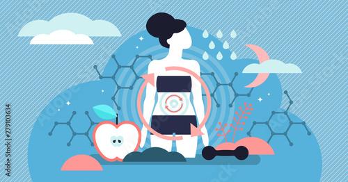 Metabolism vector illustration Obraz na płótnie